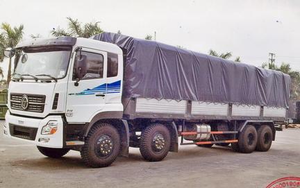 Xe tải DongFeng 19T1